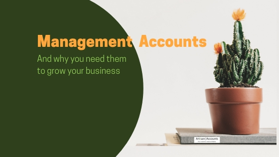 image of a flowering cactus with the words; Management Accounts and why you need them to grow your business
